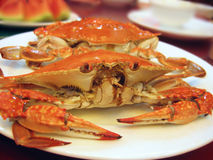 Crabs on the plate. Delicious food, close up view Royalty Free Stock Photo
