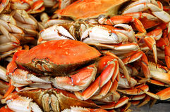 Crabs For Sale Royalty Free Stock Images