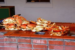 Crabs on sale Royalty Free Stock Photo
