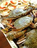 Crabs and scallops seafood raw for bbq Stock Photography