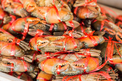Crabs in seafood market Stock Image