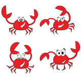 Crabs. Set ,  isolated on the white Stock Photo