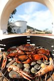 Crabs shrimps on charcoal grill Stock Photography