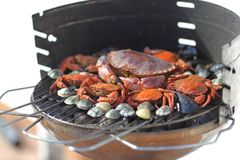 Crabs shrimps on charcoal grill Royalty Free Stock Photo