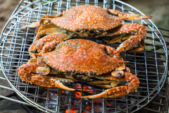 Crabs shrimps on charcoal grill Royalty Free Stock Images