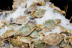 Crabs sold in the market. A Crabs sold in the market Royalty Free Stock Photography