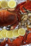 Crabs tellin clams and lemon seafood. Still life Royalty Free Stock Photo
