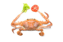 Crabs with tomatoes and vegetables Stock Photography