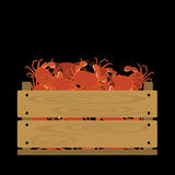 Crabs in wooden crate Royalty Free Stock Images