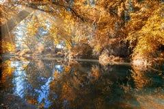 Crabtree小河的反射在秋季俄勒冈的 库存照片
