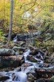 "Crabtree faller †""Nelson County, Virginia, USA Arkivfoto"