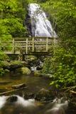 Crabtree Falls royaltyfria foton