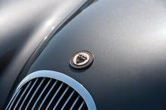 Crachá do veículo de Jaguar fotografia de stock