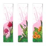Crachás verticais florais tropicais Imagem de Stock Royalty Free