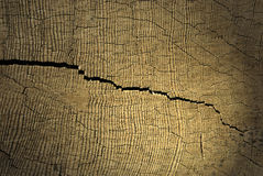 Crack. Close up of a crack on wood Royalty Free Stock Images