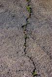 Crack in asphalt road. Long crack in asphalt road Stock Photos