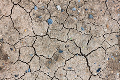 Crack dried soil background. Royalty Free Stock Photography