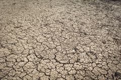 Crack dry ground. Crack dry background, concept drought Royalty Free Stock Images
