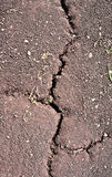Crack on dry ground Stock Images