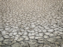 Crack dry ground in salt pan. Royalty Free Stock Photography