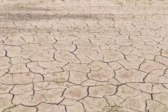 Crack on dry soil Royalty Free Stock Photos