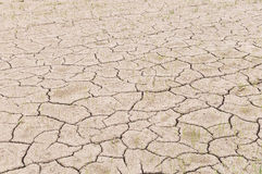 Crack on dry soil Royalty Free Stock Images