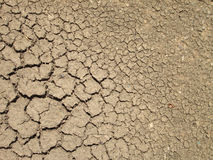 Crack on dry soil  background Stock Photography