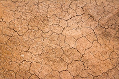 Crack earth/Crack soil on dry season. Stock Photos