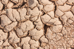 Crack earth dry Stock Image