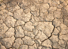 Crack earth Stock Photography