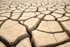 A crack ground in arid environment , Pattani, Thailand. Royalty Free Stock Images