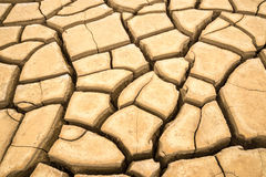A crack ground in arid environment , Pattani, Thailand. Royalty Free Stock Photography
