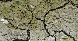 Crack ground near canal in dry season Stock Images