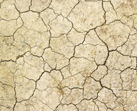 Crack ground texture background. In dry land royalty free stock photography