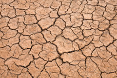 Crack ground texture background. In dry land on summer stock photography