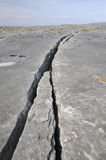 Crack in Limestone Pavement Stock Photo