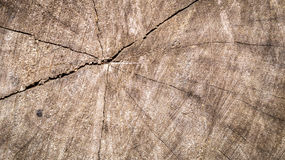 A crack in the middle of the wood. Detail look of wood surface with crack in the middle Stock Photography