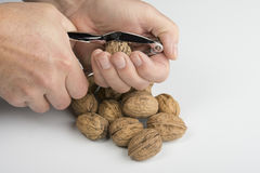 Crack the Nut. Some nuts on the table Stock Image