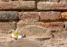 Crack old brick wall background Stock Photos