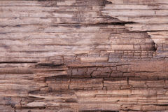 Crack old rooen wood texture Royalty Free Stock Photo