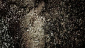Crack Rock Background Texture in Monotone Black and White , High Contrast Royalty Free Stock Photo