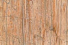Crack and Scratch on wood for pattern Royalty Free Stock Photos