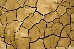 Crack soil Stock Images