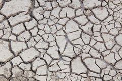 Crack of soil Royalty Free Stock Image