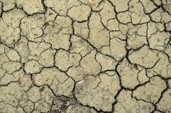 Crack soil Stock Images
