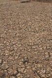 Crack soil Stock Image
