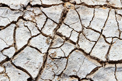 Crack soil on dry season Royalty Free Stock Photos