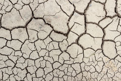 Crack soil on dry season Stock Image