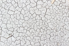 Crack soil on dry season Stock Images