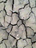 Crack soil on dry season Stock Photos